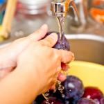 Spălăm bine prunele