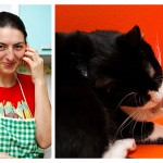 Bucătar. Pisică. Fotograf.