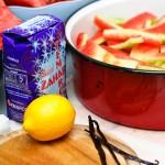 Coji de pepene, zahăr, lămâi, batoabe de vanilie.