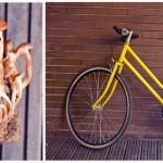 Bicicleta lui Andrei. Ghebe. Sau invers.