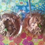 1. Claudia Rusu- Înghețată vegană din cacao