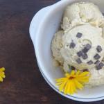 14. Toma Zgarcibaba- Înghețată vegană cu mango