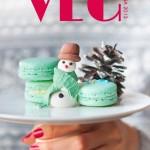 Cover_VEG de iarna 2013_mic