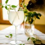 limonada cu caprifoi mici-63